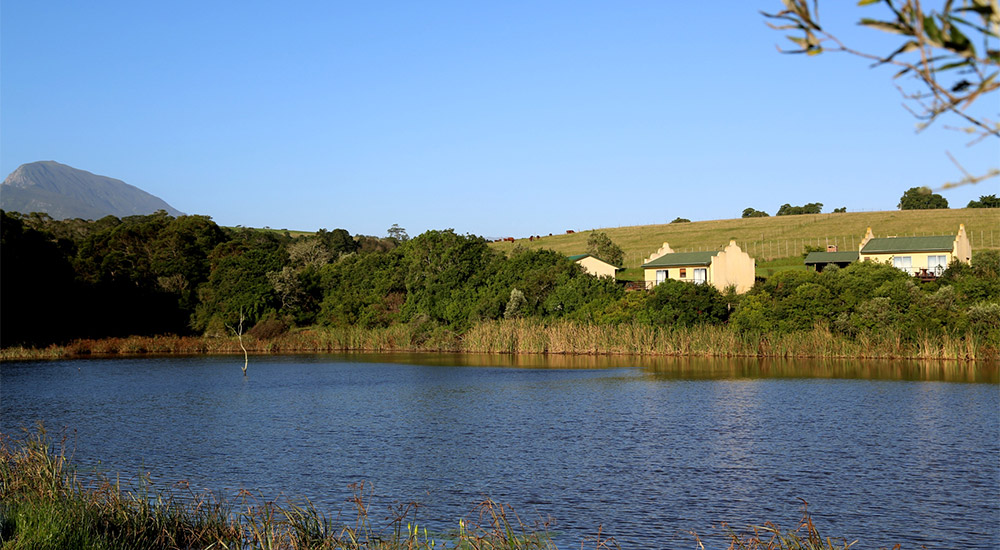 Self-catering accommodation units surrounded by beautiful landscape